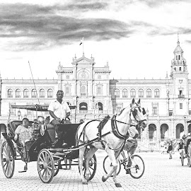 Once Upon a Time in Seville... by Avishek Patra - People Street & Candids ( spanish sqaure, people and culture, espana, europe, black and white, horse, horse carriage, architecture, travel, sevilla, spanish architecture, people, spain, islamic art, horse-drawn carriages, blackandwhite, tourists, seville, akpphotography, photographer, plaza de espana, culture )