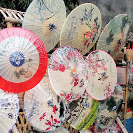 Chinese Umbrellas by Dennis  Ng - Artistic Objects Other Objects (  )