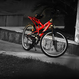 Red Bike by Prasanta Das - Transportation Bicycles ( resting, bike, red )