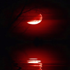 by Leslie Collins - Digital Art Places ( water, moon, red, digital art, reflections, trees, lake, night, place )