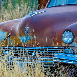 Need a Little Work by Keith Sutherland - Transportation Automobiles ( damaged, car, old, patina, vintage, dodge, rust, memory )