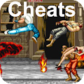 App Cheats for Final Fight APK for Kindle