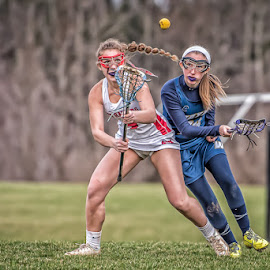 Battling for the loose ball by Keith Kijowski - Sports & Fitness Lacrosse