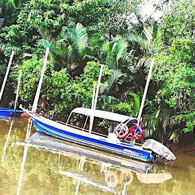 River of Life by Mohd Khairil Hisham Mohd Ashaari - Transportation Boats ( nature, river, water, boat, transportation,  )