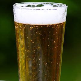 A Cold One by Ingrid Anderson-Riley - Food & Drink Alcohol & Drinks