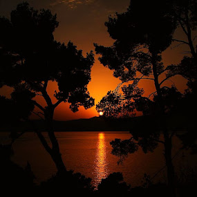 romantic by Vedrana Domazet - Landscapes Waterscapes ( sunset, yellow, black, sun )