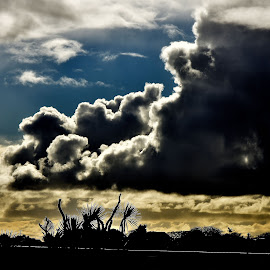 cloud formation  by Zhenya Philip - Landscapes Weather