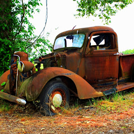 Low Miles by Kevin Hill - Transportation Automobiles ( farm, trucks, truck, rusted, dodge, rusty )