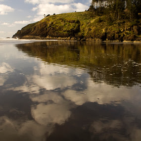 Black Sand Reflections by Jamie Newton - Landscapes Waterscapes ( water, clouds, washington, reflection, cape disappointment, ocean, coast, bluff )