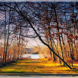 by Joan McKenna Mertens - Digital Art Places