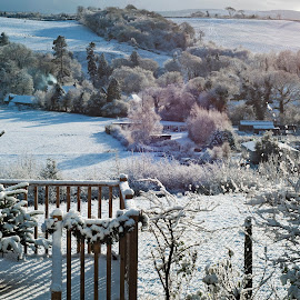 My back dor view in Winter by Stephen Crawford - Landscapes Prairies, Meadows & Fields ( xmas, events, trees, back door, annbank,  )