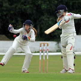 Wales wicket keeper Georgia Parfitt by John Davies - Sports & Fitness Cricket ( women in sport, girls cricket, cricket, batsman, bowler )