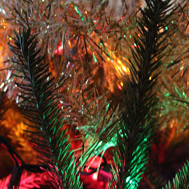 Lights on a Tree by Marcia Taylor - Public Holidays Christmas