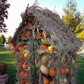 by Constantinescu Adrian Radu - Public Holidays Halloween