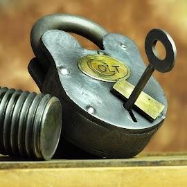 Colt Lock by Danielle Calkins - Artistic Objects Still Life ( colt, still life, lock, antique )