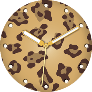 Mr.Time : Mr.leopard