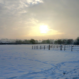 by Jo Thomas - Landscapes Weather (  )