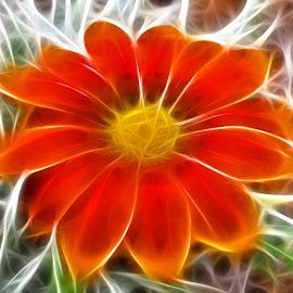 Digital Flower Art by Kris Pate - Digital Art Things