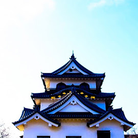 Hikone Castle by Kathy Russo - Buildings & Architecture Public & Historical ( sonder, shiga, japan, nature, histroy, castle, historical, travel, spring, hikone, wanderlust )