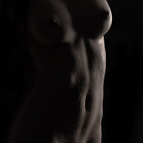 by Jean-marc Nehmé - Nudes & Boudoir Artistic Nude ( female, light, curves, shadows )