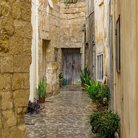 Maltese street by J Licht - Buildings & Architecture Architectural Detail