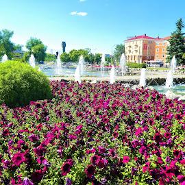 City square with fountains by Svetlana Saenkova - City,  Street & Park  City Parks ( flowers, fountain,  )