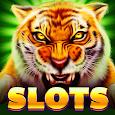 Tiger Slots: Free Slot Machine
