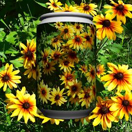 summer garden by LADOCKi Elvira - Digital Art Things ( nature, flowers, garden,  )