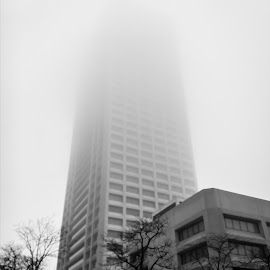 Into the mist by Rick Shick - Buildings & Architecture Office Buildings & Hotels