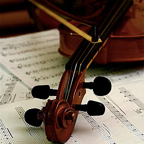 Violin III by Richard Timothy Pyo - Artistic Objects Musical Instruments
