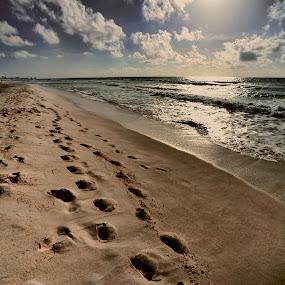 Cancun by Cristobal Garciaferro Rubio - Landscapes Beaches ( clouds, cancun, shore, sand, mexico, waves, sea, sun )