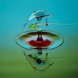 WD #1 by Ajar Setiadi - Abstract Water Drops & Splashes