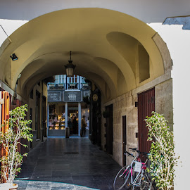 by Vicente Marzal Senior - City,  Street & Park  Historic Districts