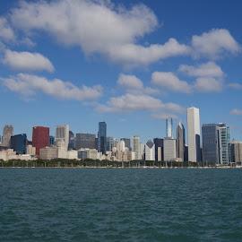 Chicago skyline by Beata McCann - City,  Street & Park  Skylines ( skyline, chicago )