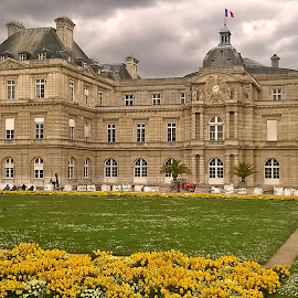 Luxembourg Palais by Ciprian Apetrei - City,  Street & Park  City Parks ( paris, building, park, traditional, architecture )