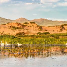 by Boldbaatar Tsend - Landscapes Deserts