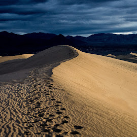 Top of the Dune by Richard Michael Lingo - Landscapes Deserts ( death valley, desert, sand dune, california, landscape )