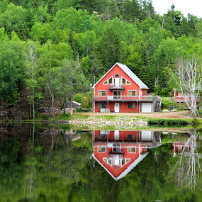 Idyll by Darius Apanavicius - Landscapes Waterscapes ( water, refections, canada, lake, forest, house, morning,  )