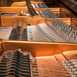 Piano Strings by James Johnstone - Artistic Objects Musical Instruments ( netherby hall:piano, strings )