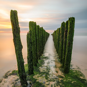 Path to the horizon by Steven Put - Landscapes Waterscapes ( waterscape, sunset, breakwater, sea, landscape, Water,  )