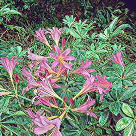 Abstract Garden by Roxanne Dean - Digital Art Abstract ( digital, art, flowers, pink, garden )