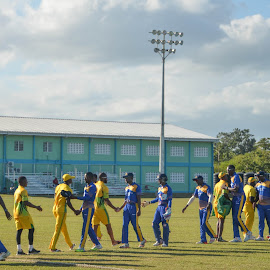 Cricket Teams by Sharmila Narwani - Sports & Fitness Cricket ( nagico cricket, balmain, jamaica vs barbados, 50 overs match )