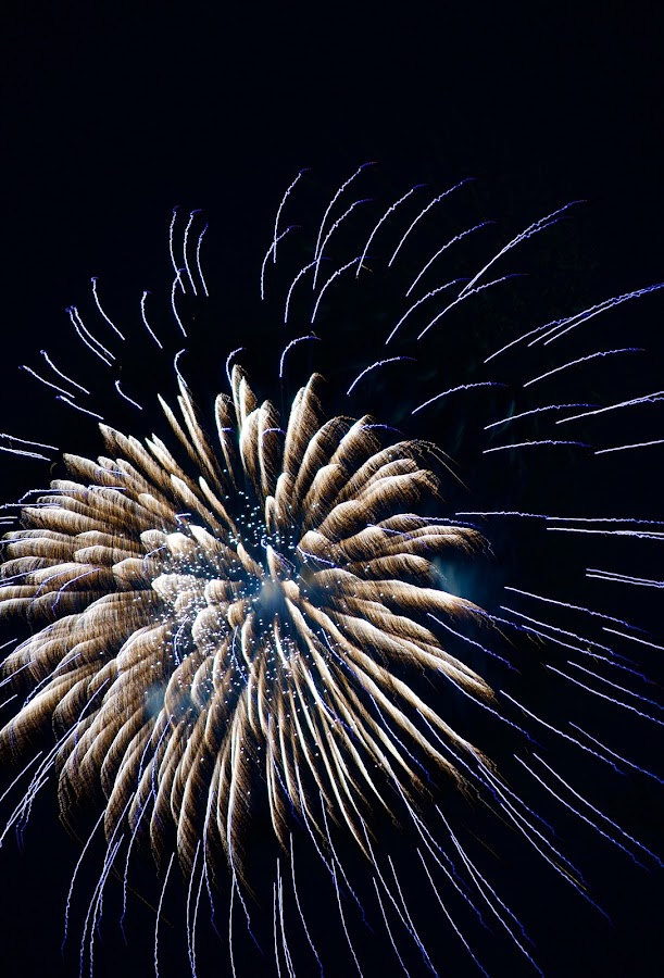 Stacked by Savannah Eubanks - Abstract Fire & Fireworks ( firework, celebration, blue, independence day, fireworks, pyrotechnics, holiday )