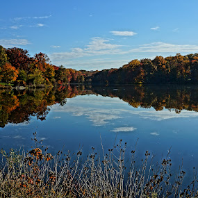 A Beautiful Day At the Lake by Ronald McCafferty - Landscapes Forests