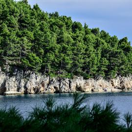 Zeleni rt by Bojan Kolman - Landscapes Beaches (  )