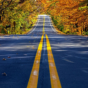 Roads Home by Phil Koch - City,  Street & Park  Street Scenes ( natural light, wisconsin, summer. spring, vertical, photograph, environement, farmland, yellow, phil koch, leaves, spring, sun, photography, love, farm, nature, autumn, horizons, flowers, inspired, clouds, office, orange, green, twilight, agriculture, pwcautumn, horizon, myhorizonart, scenic, morning, portrait, field, red, winter, blue, seasons, national geographic, serene, sunset, peace, fall, meadow, sunrise, earth, landscapes, floral, inspirational, , country, rustic, rural, old, backroads, barn, silo, crops, family, color, colorful )