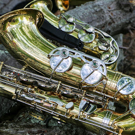 Saxaphone by Michele Williams - Artistic Objects Musical Instruments ( music, saxophone, orchestra, brass, instrument )