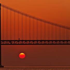 free falling by António Leão de Sousa - Buildings & Architecture Bridges & Suspended Structures