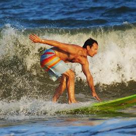 Wave Rider by Prentiss Findlay - Sports & Fitness Surfing ( surfing, surfer, waves, ocean, beach )