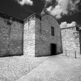 Mission Alamo by Joel Thompson - Buildings & Architecture Public & Historical ( history, old, mission alamo, black and white, mission, texas, san antonio, crappy movie, fort, davy crockett )